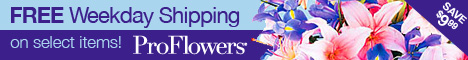 ProFlowers.com Flower Service ~ Flowers and Bouquets To Every State Nationwide